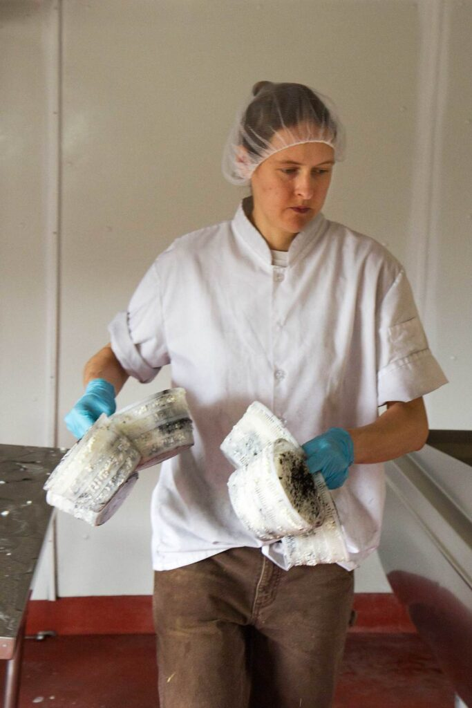 The Cheesemaker at Work